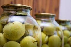 蜜饯苹果 库存图片