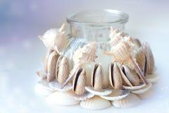 蜡烛台由自然海壳做成 库存照片