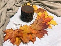 蜡烛和叶子 库存图片