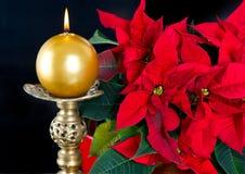 蜡烛圣诞节金黄红色星形 免版税库存照片