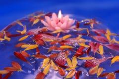 蜡烛浮动的莲花 库存照片