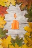 蜡烛由红萝卜制成 免版税库存图片