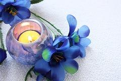 蜡烛花 库存照片