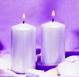 蜡烛花 免版税库存照片