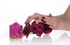 蜡烛黑暗的修指甲兰花紫色 图库摄影