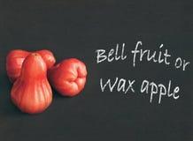 蜡苹果或响铃果子 免版税库存照片