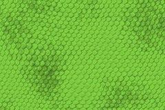 蜥蜴皮肤模式 图库摄影