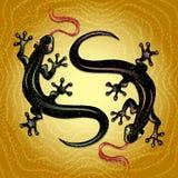 蜥蜴舞蹈 免版税库存照片