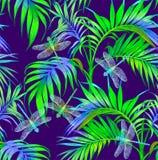 蜻蜓和花 无缝的模式 深蓝背景 您背景设计花卉晚上无缝的夏天 免版税库存图片
