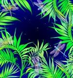 蜻蜓和花 深蓝背景 您背景设计花卉晚上无缝的夏天 免版税库存照片