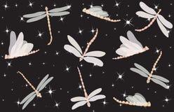 蜻蜓晚上 免版税图库摄影