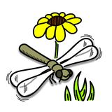 蜻蜓颜色 库存图片