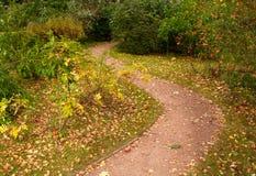 蜿蜒地流的公园路径 库存图片