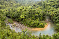 蜿蜒的小河通过新西兰的树木丛生的小山 免版税库存照片