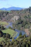 蜿蜒的河在新西兰 库存照片