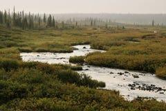 蜿蜒的河通过有薄雾的阿拉斯加的乡下 免版税库存照片