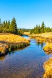 蜿蜒草甸和森林晴天中的小山小河与蓝天和白色云彩在Jizera 免版税库存图片