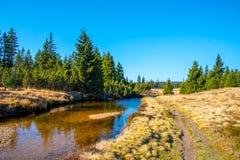 蜿蜒草甸和森林晴天中的小山小河与蓝天和白色云彩在Jizera 库存照片