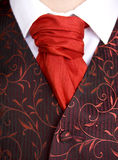 蝉形阔领带领巾关系 免版税库存照片