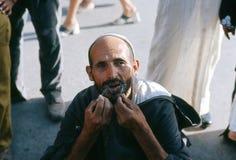 蝎子。 马拉喀什。 摩洛哥。 免版税库存图片