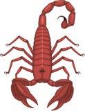 蝎子传染媒介例证 向量例证