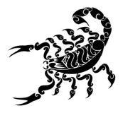 蝎子 向量例证
