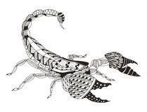 蝎子zentangle传统化了,导航,例证,徒手画 库存照片