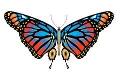 蝴蝶五颜六色的查出的国君 免版税库存图片