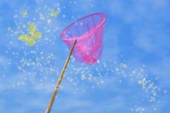 蝴蝶净粉红色 图库摄影