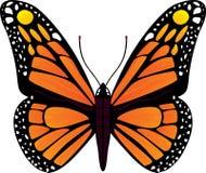 蝴蝶向量例证 免版税库存图片