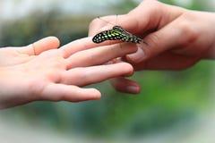 蝴蝶和孩子 免版税图库摄影