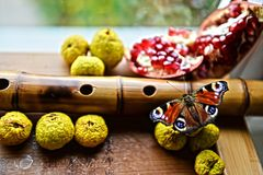 蝴蝶和果子 图库摄影