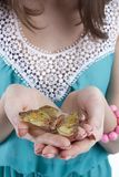 蝴蝶在一个少妇的手上 免版税图库摄影