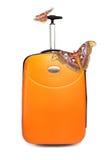 蝴蝶巨大的手提箱热带二 库存照片