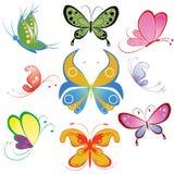蝴蝶收集不同多彩多姿 库存照片