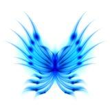 蝴蝶火热的飞翼 免版税库存照片