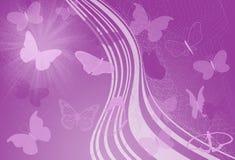 蝴蝶紫色通知 免版税库存图片