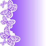 蝴蝶紫色 库存图片
