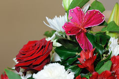 蝴蝶红色玫瑰 免版税库存图片
