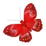 蝴蝶红色 免版税库存照片