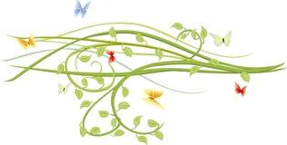 蝴蝶绿色枝杈 库存照片