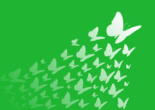 蝴蝶绿色 免版税库存照片