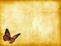 蝴蝶羊皮纸 免版税库存照片