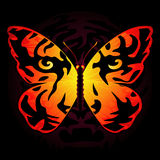 蝴蝶色的老虎 库存例证