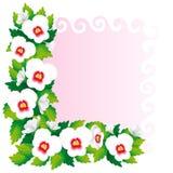 蝴蝶花框架  免版税图库摄影