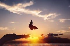 蝴蝶采取从一只人的手的飞行 库存图片