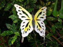 蝴蝶金属 图库摄影