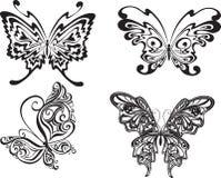 蝴蝶集 图库摄影