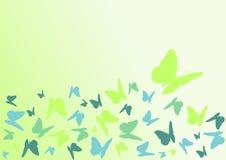 蝴蝶颜色 免版税库存图片