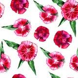 蝴蝶下落花卉花重点模式黄色 花桃红色康乃馨无缝的背景 免版税库存照片